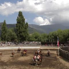 Rodeo campesino en Lonquimay para el 20 de enero.