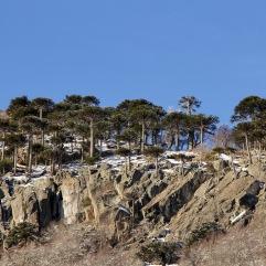 Basalto en Icalma