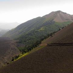 Escorial volcán Lonquimay y camino a Lolco