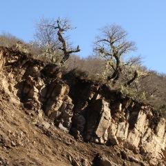 Rocas a la vista por erosión en Chilpaco