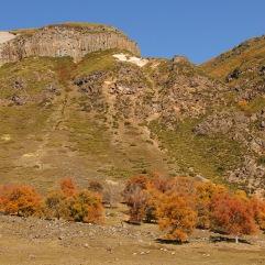 Basalto columnar, en Mitrauquén Alto