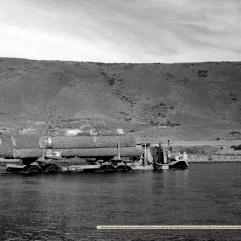 Camión con trozos de Araucaria cruzando el Bío Bío