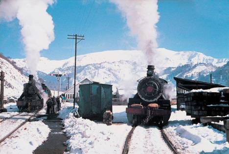 Tren de la Araucanía en Sierra Nevada.