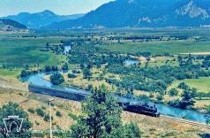 Tren en las cercanías de Lonquimay